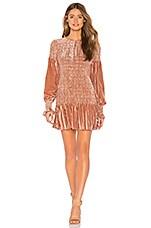 LoveShackFancy Scarlett Mini Dress in Cinnabar