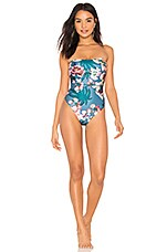 lovewave The Russo One Piece in Painted Floral