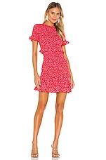 LIKELY Faye Dress in Bittersweet Multi