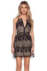 LIV Sandra Lace Dress in Black