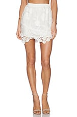 Arie A Line Skirt in Ivory