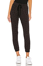 LNA Brushed Leopard Pant in Black Leopard