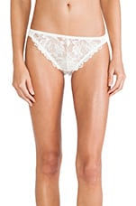Flora Brief in Ivory