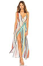 Lovers + Friends Montague Maxi Dress in Aruba Stripe