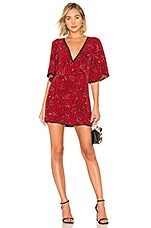 Lovers + Friends Jason Mini Dress in Sahara Cheetah