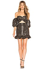 Lovers + Friends Vivienne Mini Dress in Black & Gold