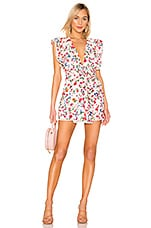 Lovers + Friends Jill Mini Dress in Peony Floral
