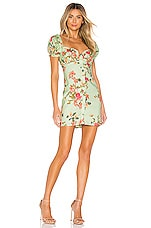 Lovers + Friends Kenna Mini Dress in Sage Floral