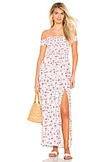 Lovers + Friends Dawn Maxi in Gingham Floral