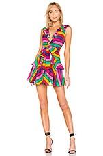 Lovers + Friends Drew Mini Dress in Miami Lights Stripe