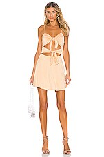 Lovers + Friends Nate Mini Dress in Tan