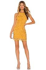 Lovers + Friends Caspian Shift Dress in Goldenrod Yellow