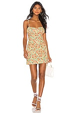 Lovers + Friends Jacey Mini Dress in Summer Field Floral