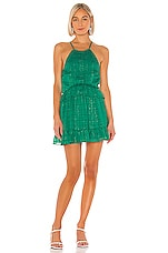 Lovers + Friends Banks Dress in Kelly Green