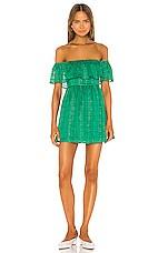 Lovers + Friends Peter Mini Dress in Kelly Green