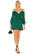 Lovers + Friends Ms Charmer Dress in Green