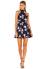 Lovers + Friends Andrew Mini Dress in Royal Floral