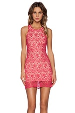Radiant Dress in Pink Lace