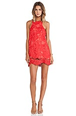 Lovers + Friends Caspian Shift Dress in Coral