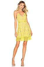 Lovers + Friends Bellini Dress in Sunshine