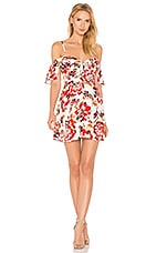 Lovers + Friends All Over Dress in Day Floral