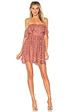 Lovers + Friends Dream Vacay Dress in Mauve