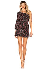 Lovers + Friends Adams Dress in Dark Autumn Floral