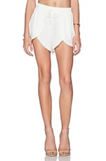 Mariposa Shorts in Ivory