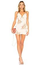 LPA Dress 252 in Blush Bouquet