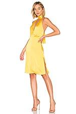LPA Halter Tie Dress in Mustard Yellow