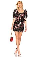 LPA Zeta Mini Dress in Red Floral