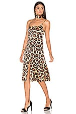 Dress 14 in Painted Leopard