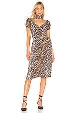LPA Silvia Dress in Leopard
