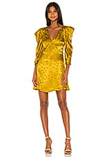 LPA Jude Dress in Golden Hearts