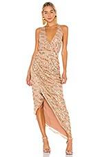 LPA Romano Gown in Nude & Silver
