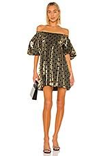 LPA Beatrix Dress in Gold & Black
