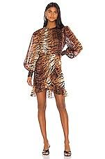 LPA Deirdre Dress in Tiger Stripe