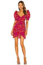 LPA Araceli Dress in Raquel Floral