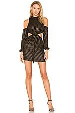 LPA Dress 514 in Black & Gold