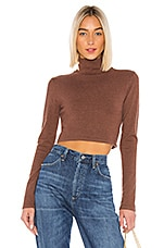 LPA Charlotte Turtleneck in Brown