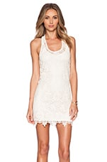 Sylvie Lace Mini Dress in Natural