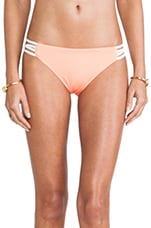 Low Down Bottom in Electric Coral