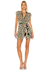 Le Superbe Flirty Leopard Dress in Van Gogh Leopard