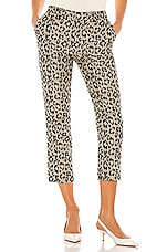 Le Superbe Jenna Pants in Leopard