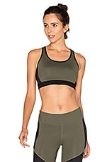 Enclave Sports Bra in Willow