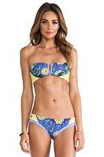 Bandeau Bikini Top in Sunny Sunlits