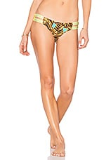 Veranda Palms Bottom in Yellow Multi