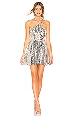 MAJORELLE Blakely Mini Dress in Silver