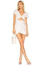 MAJORELLE Evelyn Dress in Multi Stripe