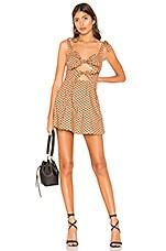 MAJORELLE Lilly Mini Dress in Tan & Black Dot